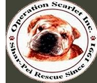 Operation Scarlet